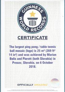 Pokorili sme Guinnessov rekord najväčšou sedmokráskou 9