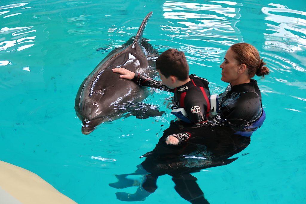 marko-delfinoterapia-delfin-constanta