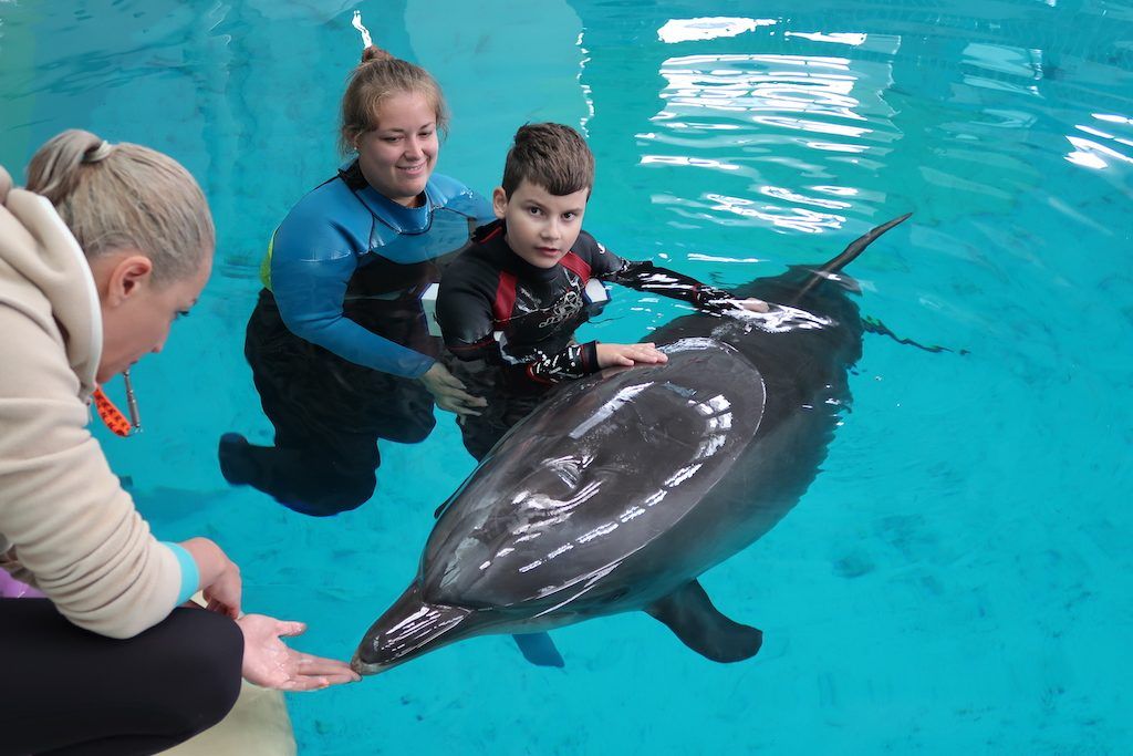 terapia-delfinom-marko-delfinoterapia-rumunsko